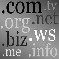 top level domains domain name research