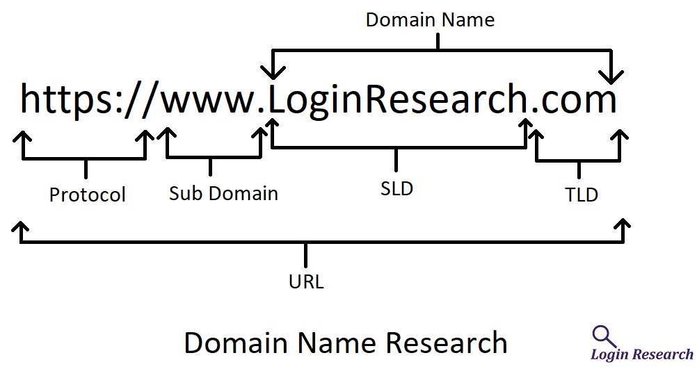 domain name research